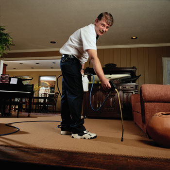 Carpet - For the best in carpet cleaning, water damage restoration, and upholstery cleaning, contact us in Morrow, Georgia.